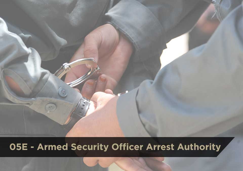 05E Armed Security Officer Arrest Authority | DCJS | $100